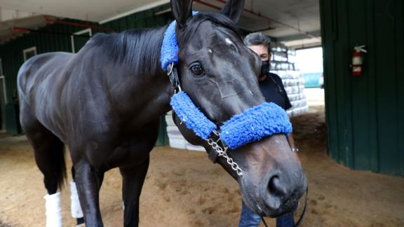 Kentucky Derby winner Medina Spirit is walked in the barn by assistant trainer Jimmy Barnes after arriving Monday, May 10, at Pimlico Race Course for the upcoming Preakness Stakes.