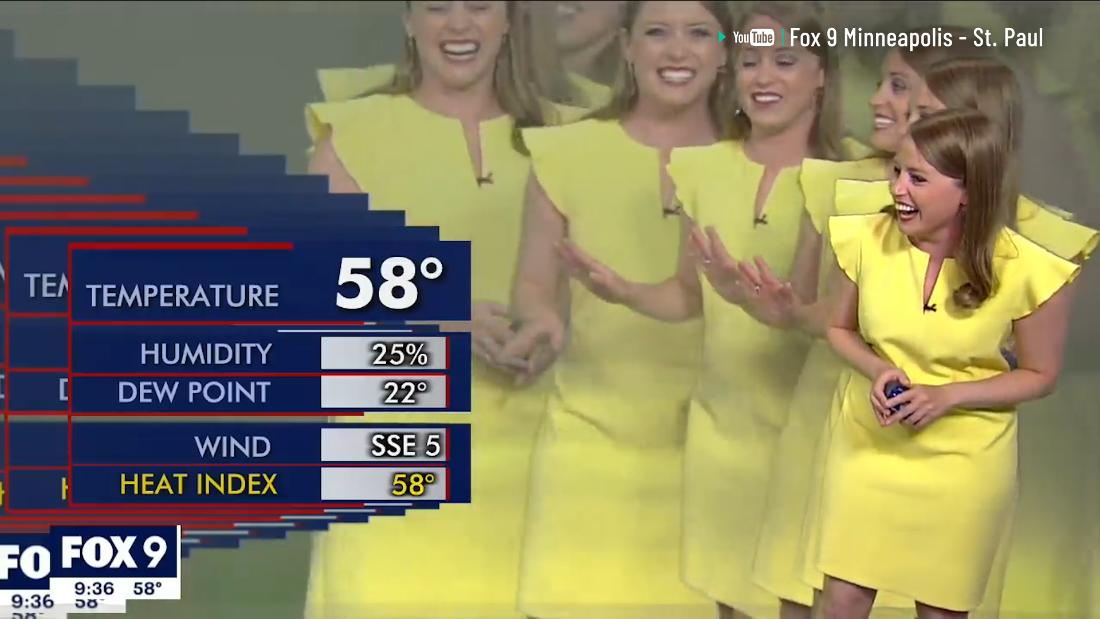 Weather reporter's live TV hit goes hilariously wrong