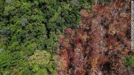 Burnt areas near Moraes Almeida in Brazil's Para state are shown in September 2019. Experts say there is a strong link between deforestation and fires in the Amazon rainforest.