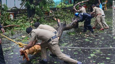 Police clear fallen trees from a road following heavy rains and strong winds brought by Cyclone Tauktae, at Panjim, Goa on May 16.