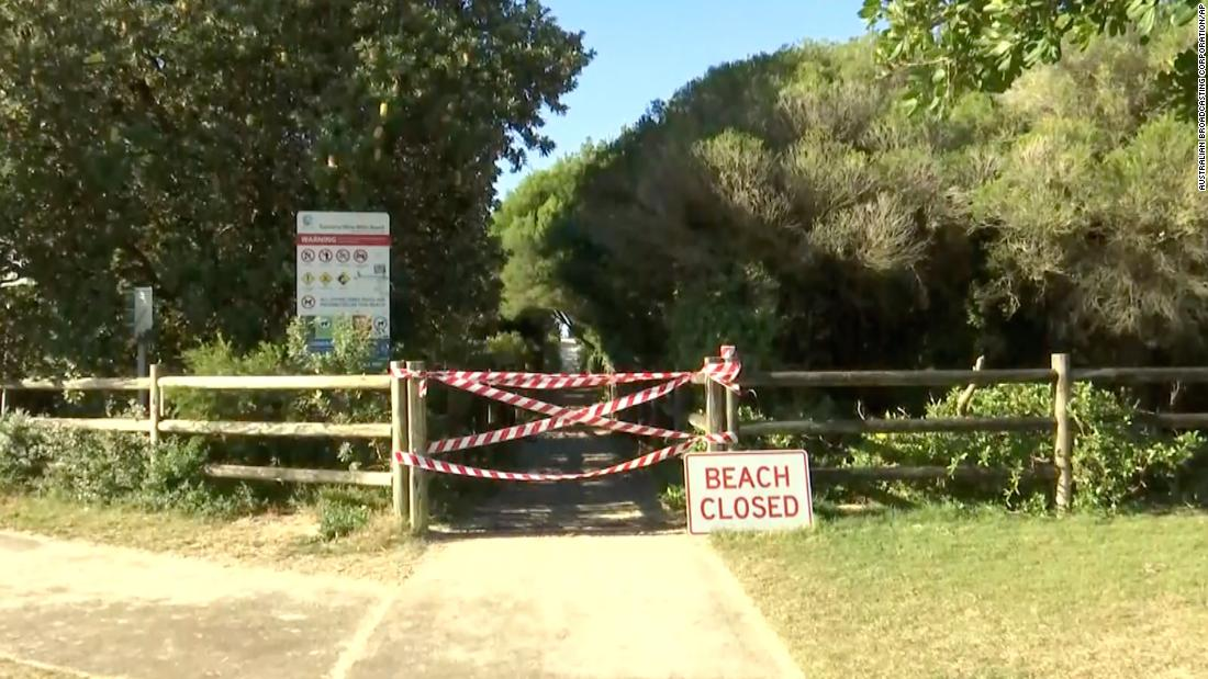 Surfer dies after being bitten by shark in Australia