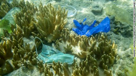 Face masks and plastic debris are seen on the bottom of the Red Sea in October.