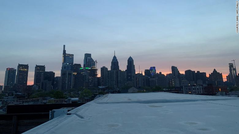 Philadelphia has dimmed its skyline after a 'mass collision' killed thousands of migrating birds