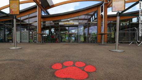 ZSL Whipsnade Zoo is celebrating its 90th birthday Sunday.