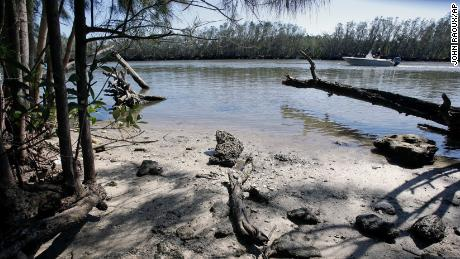 The Indian River Lagoon, pictured here in 2017, is in extreme environmental distress, and it's impacting the lives of hundresds of manatees that live there.