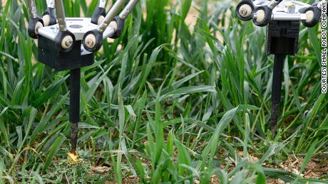 The robot that zaps weeds with electricity.