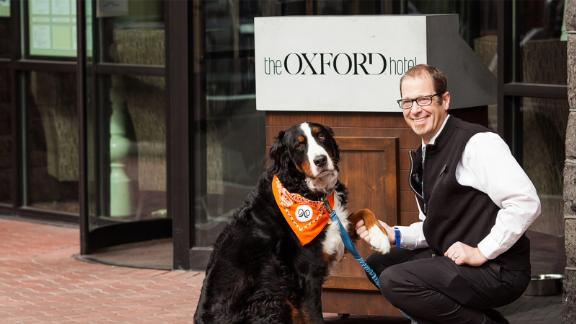 Dogs that stay at the Oxford Hotel get a dog bed, two travel dog bowls and more.