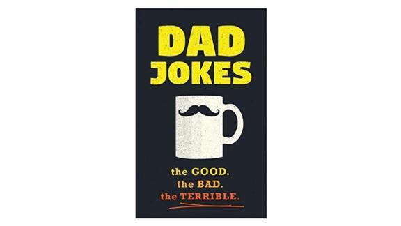 'Dad Jokes: Over 600 of the Best (Worst) Dad Jokes Around' by Jimmy Niro