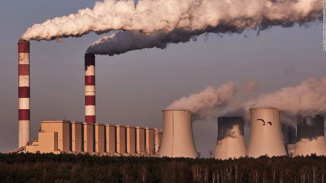 CEOs urge world leaders to take bolder climate action