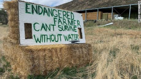 """A sign in Tulelake, California, says """"Endangered farmer can't survive without water."""""""