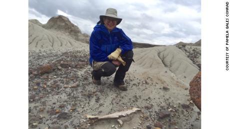 캐나다 앨버타에있는 콘래드 공룡 주립 공원을 탐험하세요.