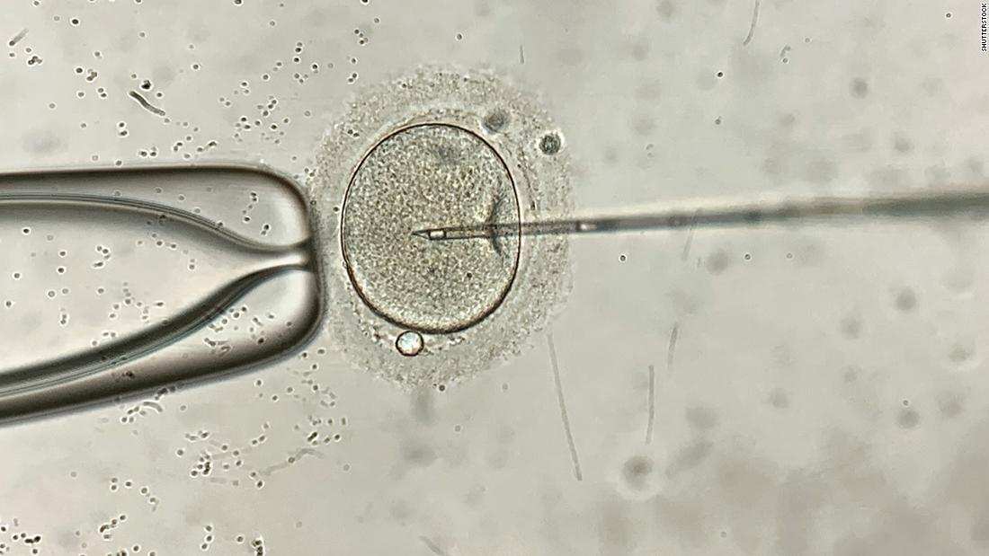 210611010401 01 california embryo destruction case super tease
