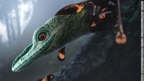Oculudentavis naga, depicted in this artist's impression, is a bizarre lizard that research initially categorized as a tiny, birdlike dinosaur.