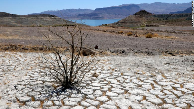 This area of dry, cracked earth used to be underwater near where the marina was once located in the Lake Mead National Recreation Area.