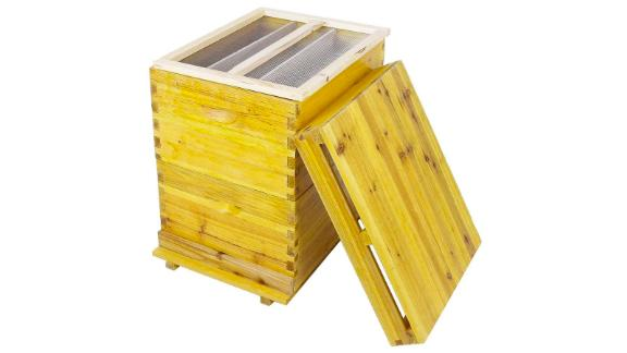 Cedar Wood Honey Keeper Beehive Box