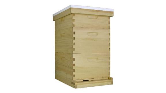 Busy Bees 'N' More Langstroth Bee Deep Brood Box