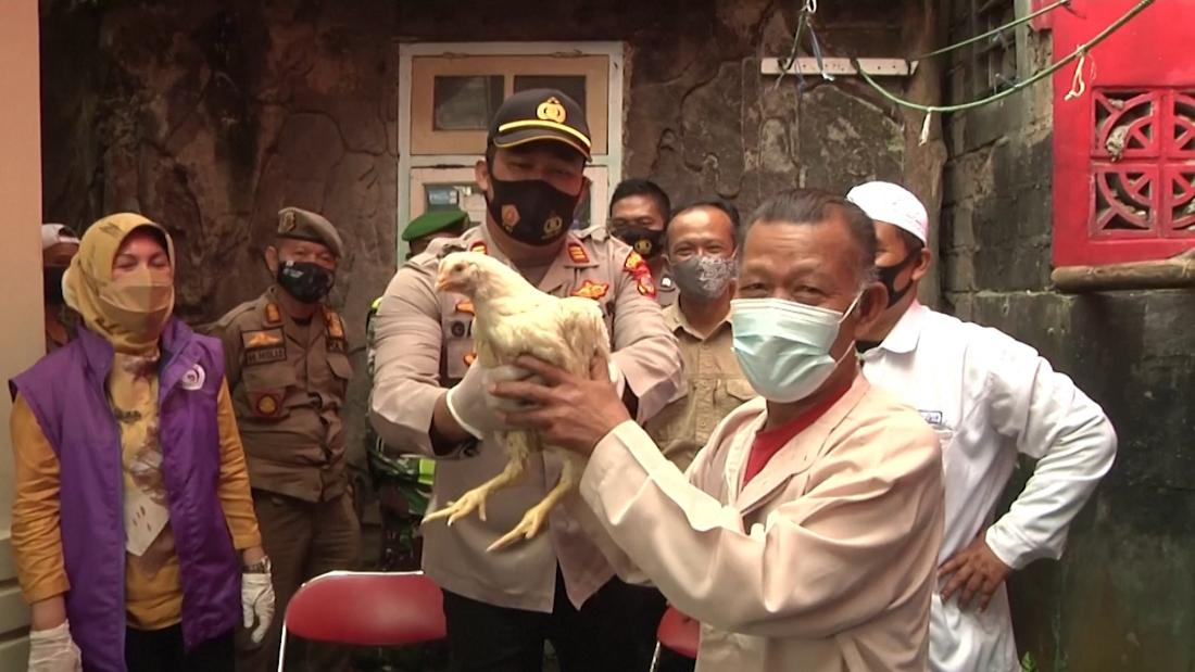You get a live chicken if you get a shot in Indonesia
