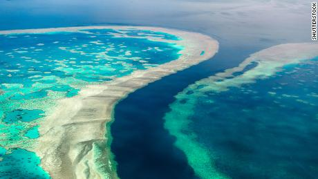 The Great Barrier Reef is the world's largest coral reef system and a vital marine ecosystem.