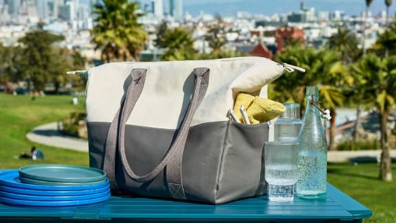 REI Co-op + West Elm Insulated Picnic Tote