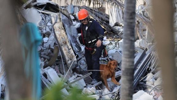 Rescue personnel search through the rubble with dogs.