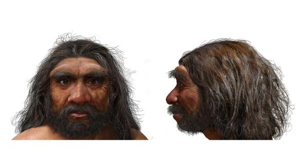 This illustration shows what Homo longi -- dragon man -- may have looked like.