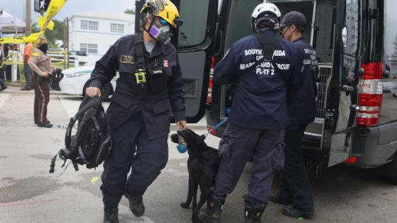 Rescue workers arrive to the scene with dogs on June 25.