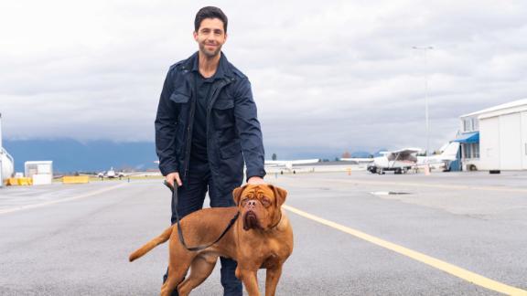Josh Peck plays a US Marshal who inherits his dad's dog in 'Turner & Hooch' (Disney+/Farah Nosh).