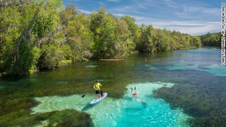 The Florida Wildlife Corridor is nearly 18 million acres of natural wonder. The state just took a significant step to keep it alive