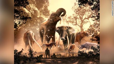 Modern elephants survived ancient climate change. More than 180 other species, including mastodons, didn't.