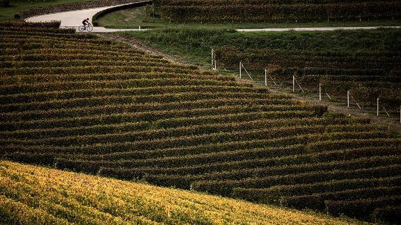 Il treno attraverserà la regione vinicola delle Lange, in Piemonte.