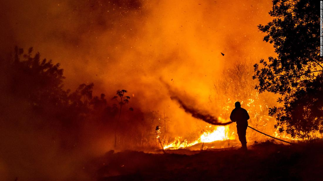 Cyprus wildfires leave at least four dead