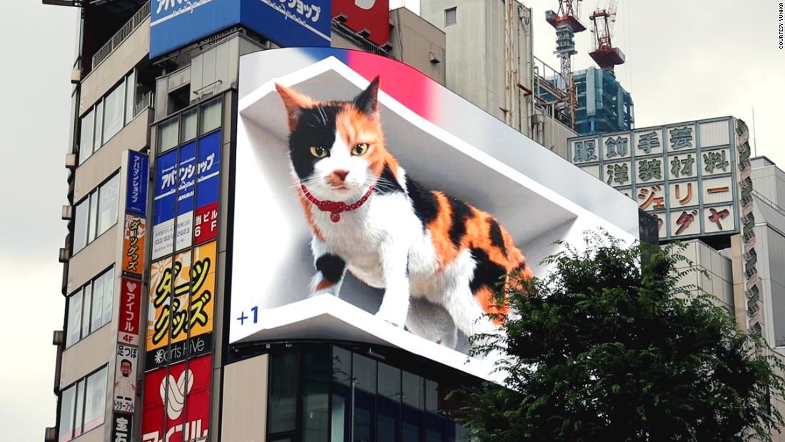 210706210012 3d cat billboard tokyo super tease.