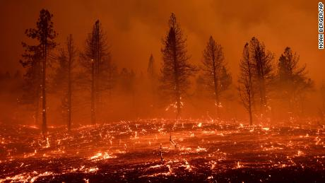 Embers blow across a field Friday as the Sugar Fire, part of the Beckwourth Complex Fire, burns in Doyle, California.