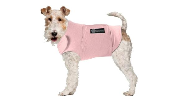 American Kennel Club Calming Shirt for Dogs
