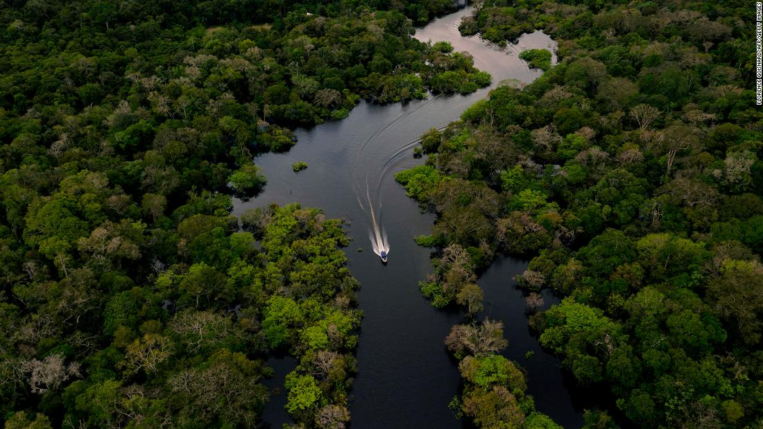 Amazon rainforest is emitting more carbon dioxide than it absorbs in some areas, study says