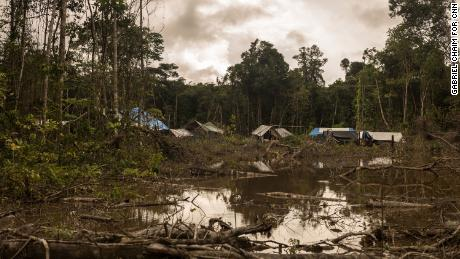 The police have been listening to their complaints, according to Yanomami.