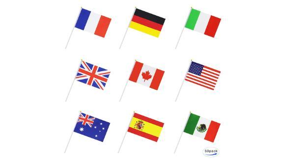 50 countries international stick flag