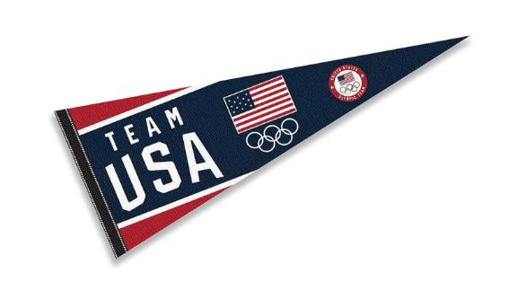 USA WinCraft Team Full Size Olympic Pennant Banner