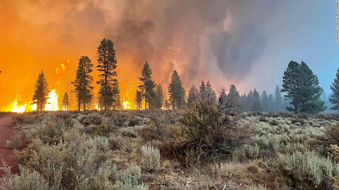 Wildfires have erupted across the globe, scorching places that rarely burned before