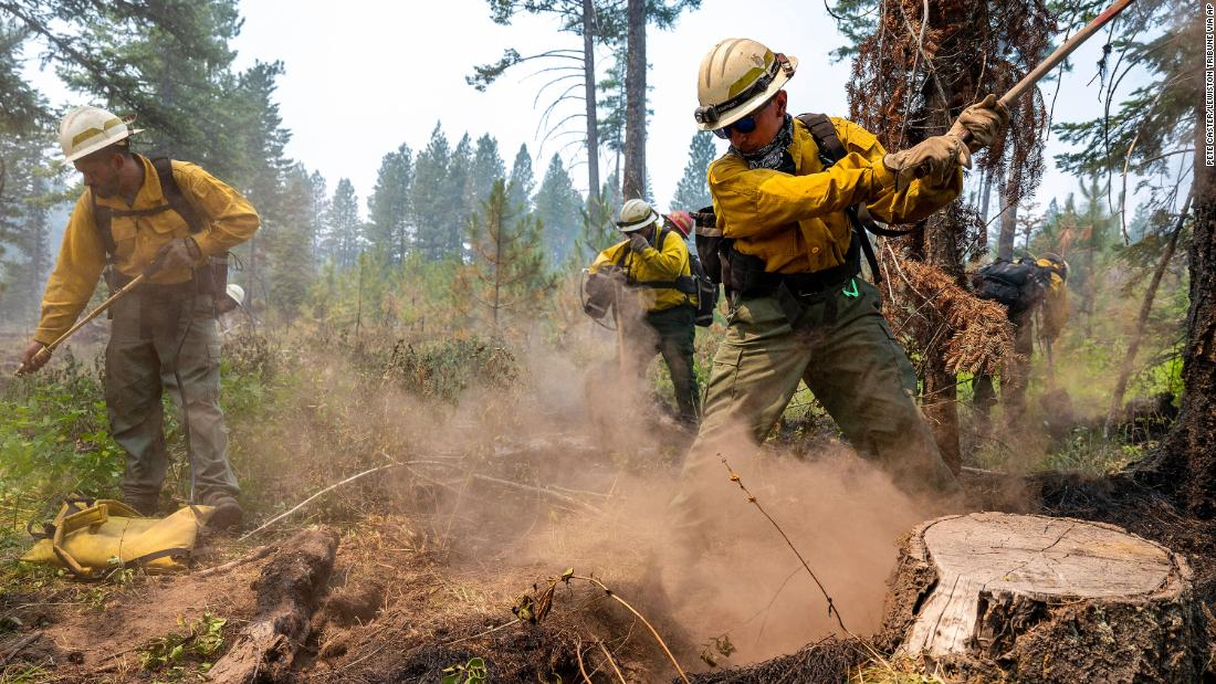 Firefighters dig away at hot spots underneath stumps and brush after flames from the Snake River Complex Fire swept through the area south of Lewiston, Idaho, on July 15.