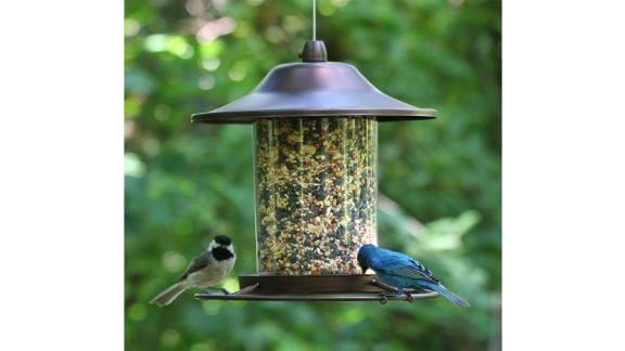 Panorama Bird Feeder