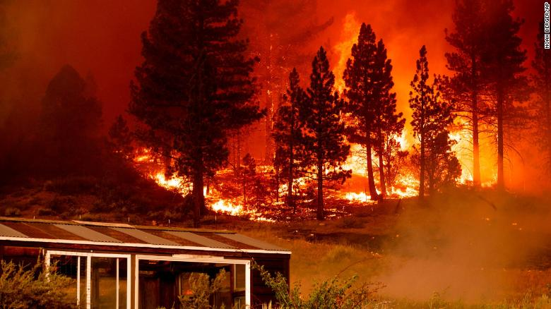 Before a wildfire grew into an out-of-control blaze, the Forest Service decided to let it burn