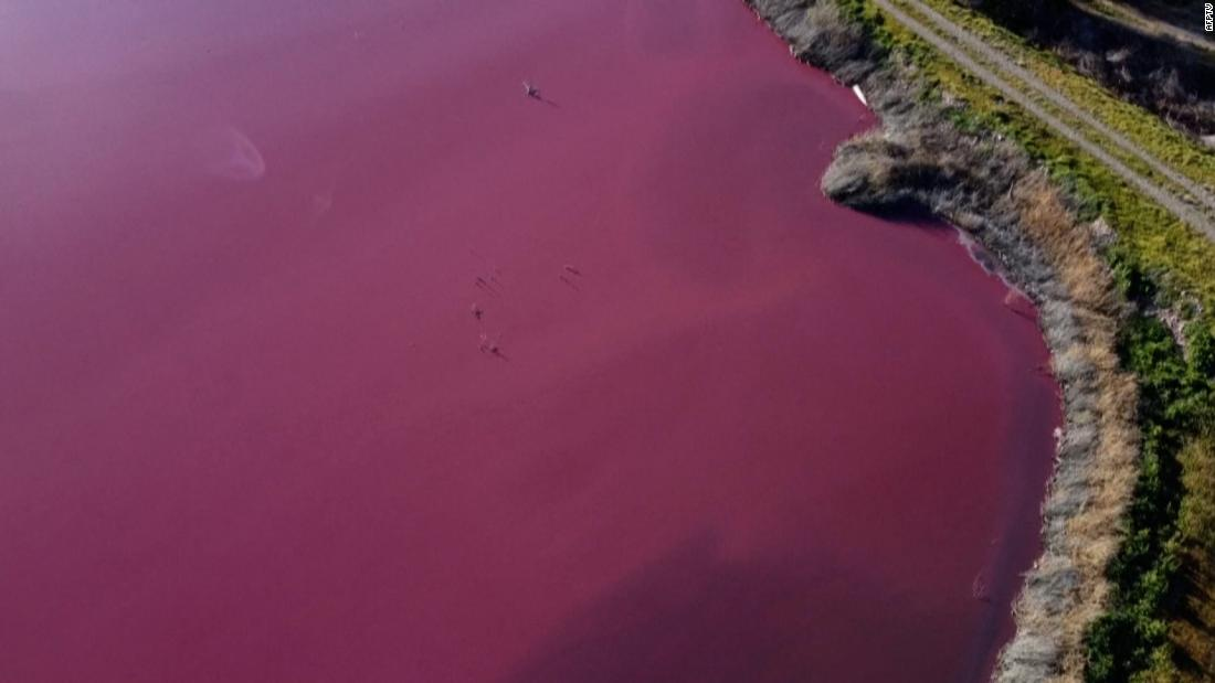 See disaster-stricken lagoon turned pink