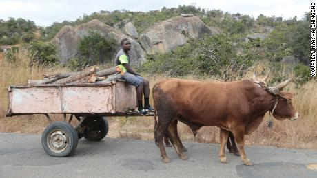 Once considered a 'city disease,' Zimbabwe's rural areas are being hit hard by Covid, and panic has set in