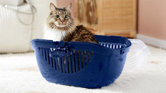 Frisco Top Loading Cat Kennel, Navy