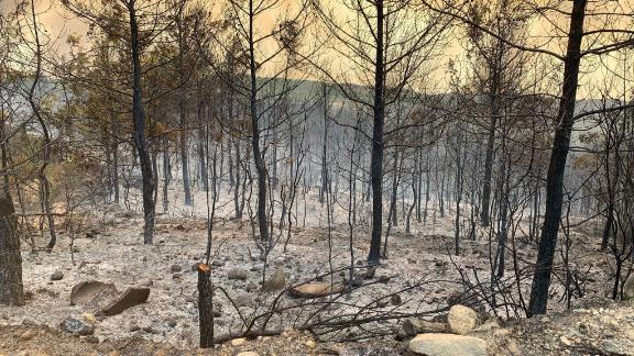 CNN istanbul Producer captured the aftermath of the on going wildfire in souther Turkey in Manavgat, Turkey