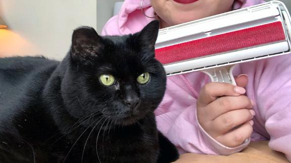ChomChom Roller Pet Hair Remover
