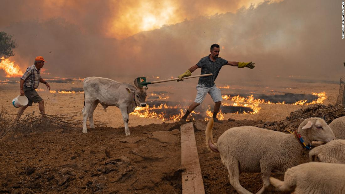 Greece and Turkey battle heatwave and fires in Europe's summer of extreme weather