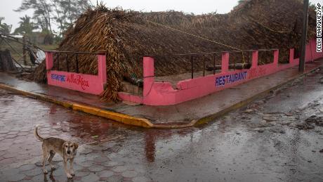 El perro está parado frente a un restaurante que fue destruido por el huracán Grace en el área de Vecruz de Tecolutla, México.