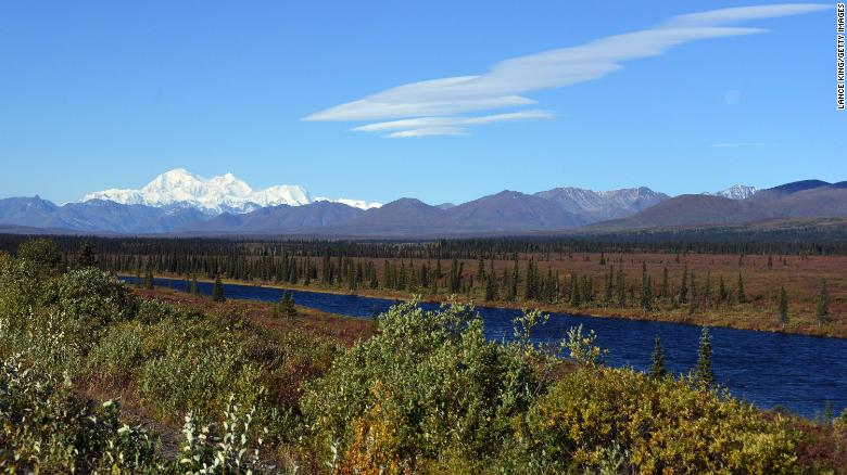 Hiker attacked by bear during solo outing in Denali National Park